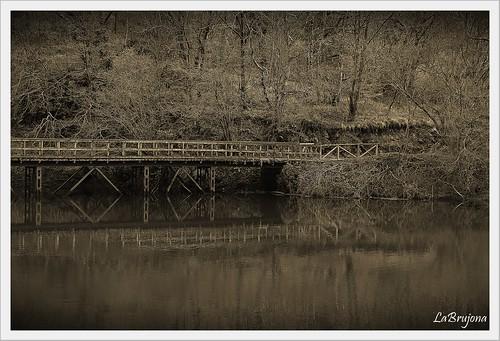 """""""El puente"""""""