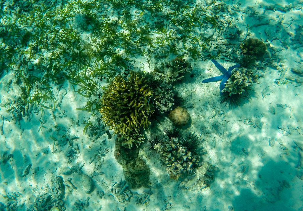 Camiguin Island - Day 3 - 2015 (10)