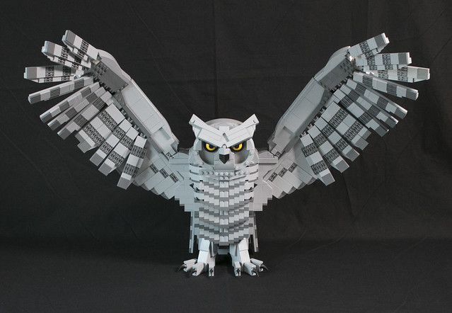 Owl_front