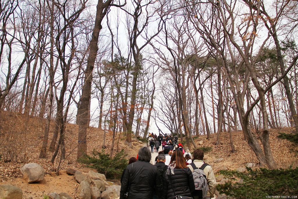 33146685900 286d2ca333 b - Seoul-ful Spring 2016: Greeting the first blooms at Changdeokgung Palace