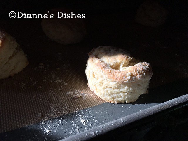 Buttermilk Biscuits: Sunlight