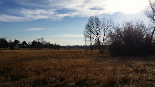 #tommw 40F calm. Scattered clouds