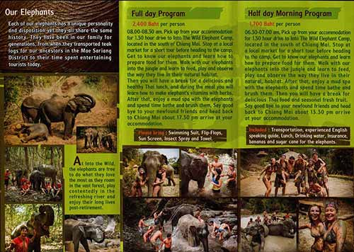 Into The Wild Elephant Camp Chiang Mai Thailand Brochure 2