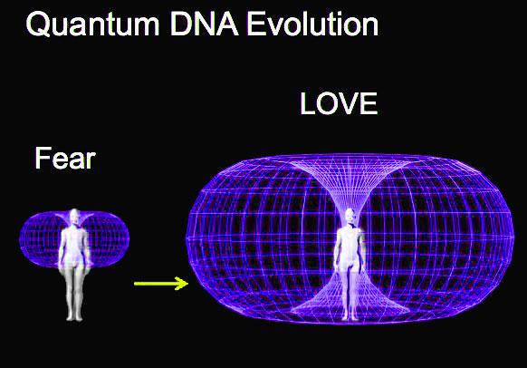 Quantum-Heart-Torus