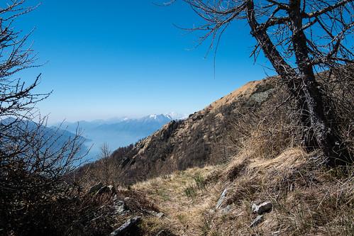 Weitblick | Alpe Morisciolo TI
