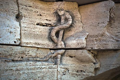 Il serpente dell'isola tiberina