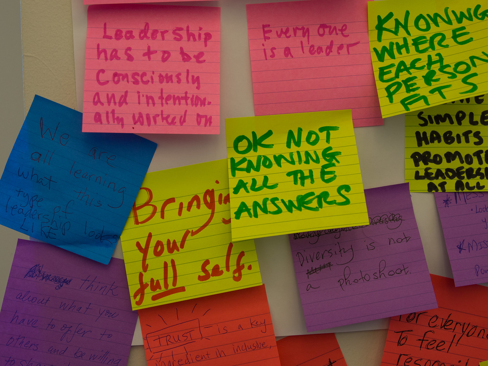 What Creates Inclusive, Networked, and Collective Leadership?