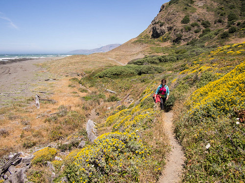 Anna walking through wildflowers | by chris nelson dot ca