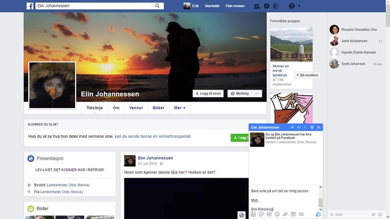 elin johannessen facebook 1