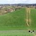 Northala Fields