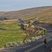 Treo Bike Ranch trip day 3 - Hardman to Columbia River-10