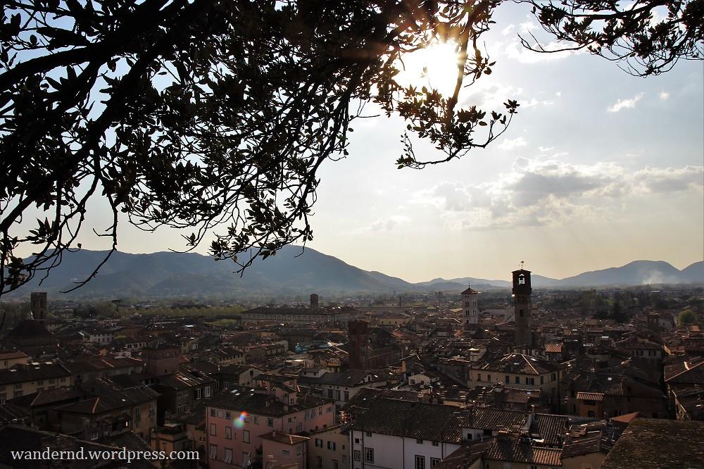 Lucca Ausblick vom Torre Guinigi im Gegenlicht