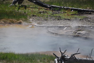 MRCGNN012 (MNN012) (unnamed hot spring 45 meters NNW of Egeria Spring) (mid-afternoon, 5 June 2013) 6 | by James St. John