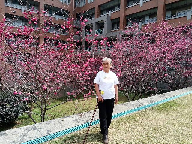 暨南大學 (19)