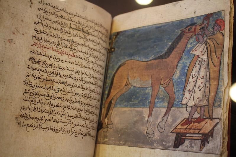 Livre des soins pour les montures, 1714 - Splendeurs de l'écriture au Maroc, Manuscrits rares et inédits à l'Institut du monde arabe