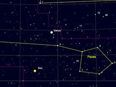 Venus250317