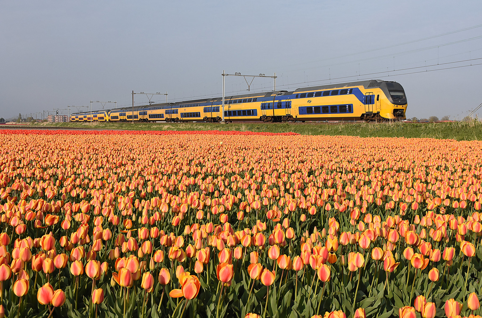 Iconic choo-choo of the Netherlands: VIRM double-decker intercity