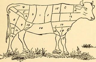 Meat Diagram