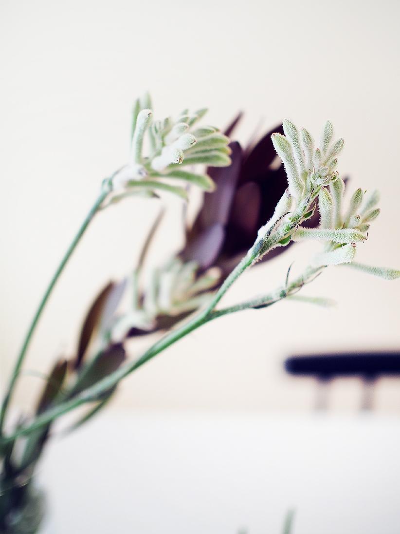 kukkakauppa_tre1