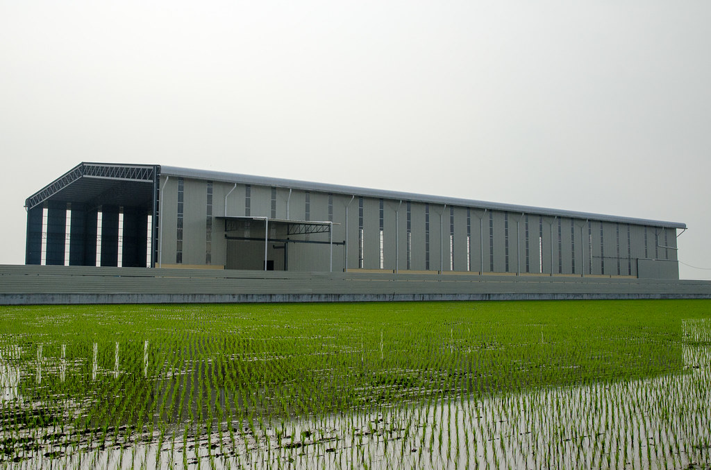 Paddy field and the factory
