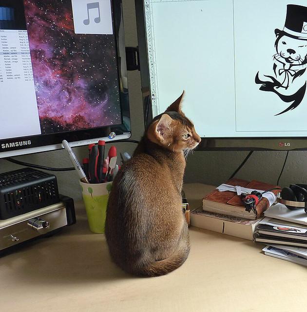 Sebastian at the Computer-1