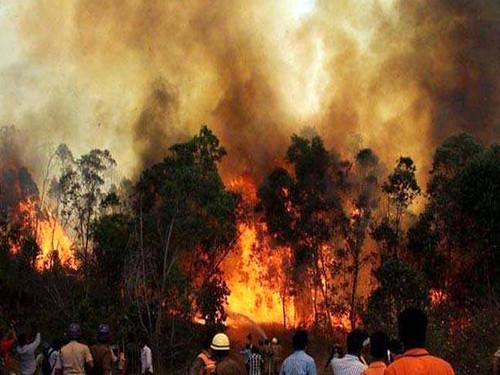 लापरवाही के कारण उत्तराखण्ड के जंगलों में लगती आग