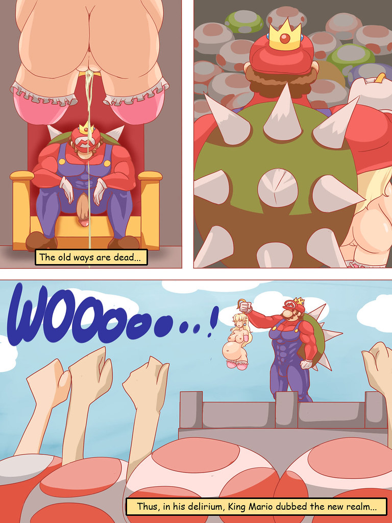 1769357_Mario_Princess_Peach_Super_Mario_Bros_Toad_comic_veiled616