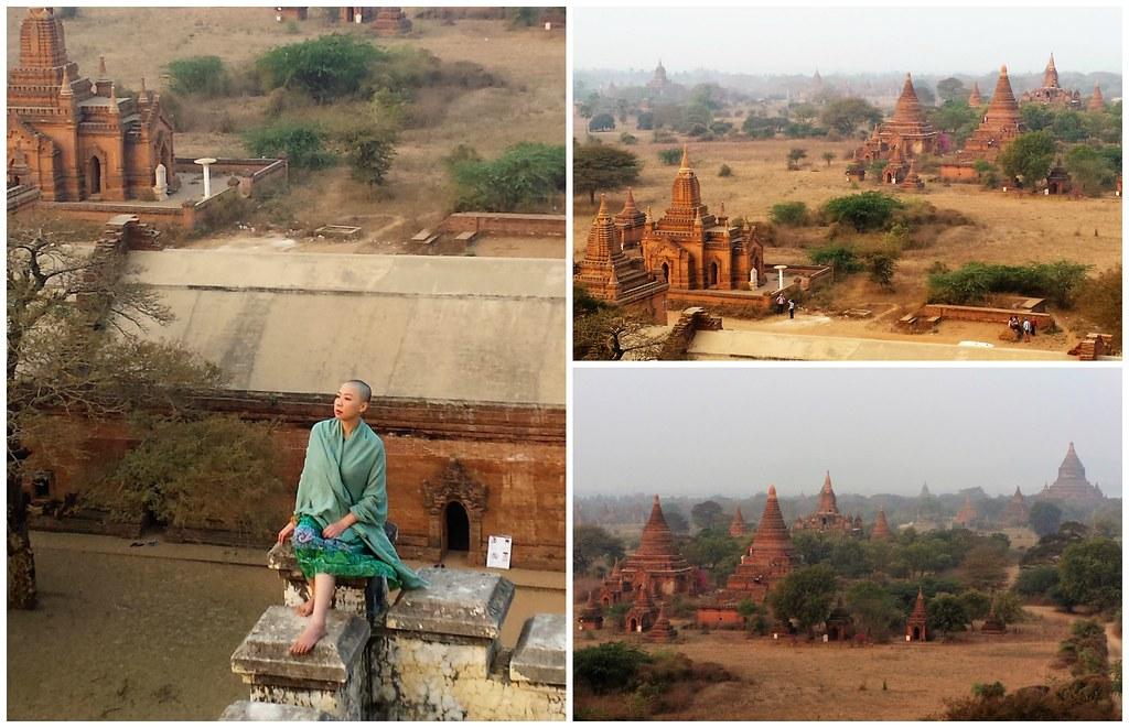 Bagan mniszka