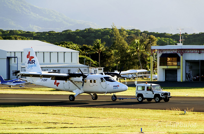Twin Otter DHC6 1/72 32892414244_1969a8361f_c