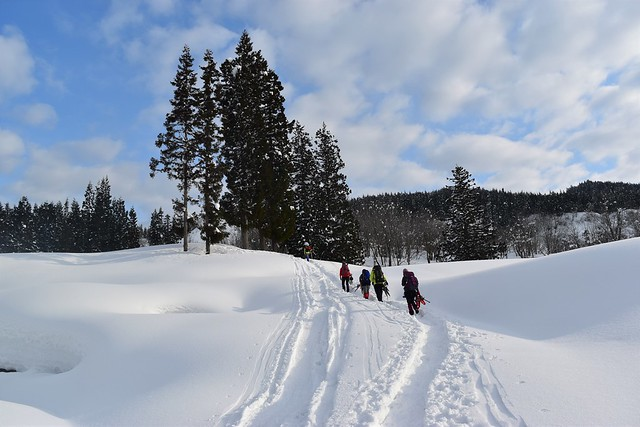 冬の守門岳 雪の登山道