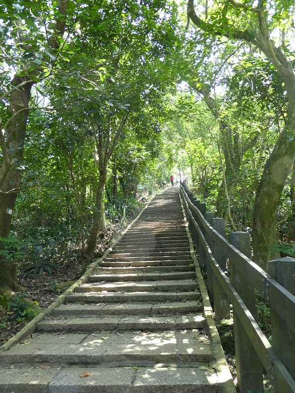 Footpath up Elephant Mountain, Taipei