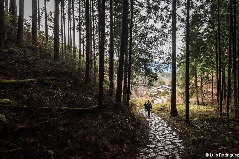 Ruta-Nakasendo-Magome-Tsumago-118
