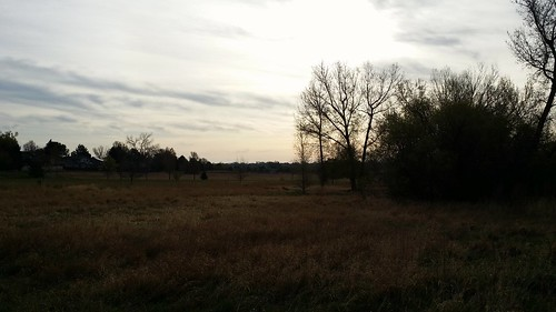 #tommw 40F mostly cloudy. Calm