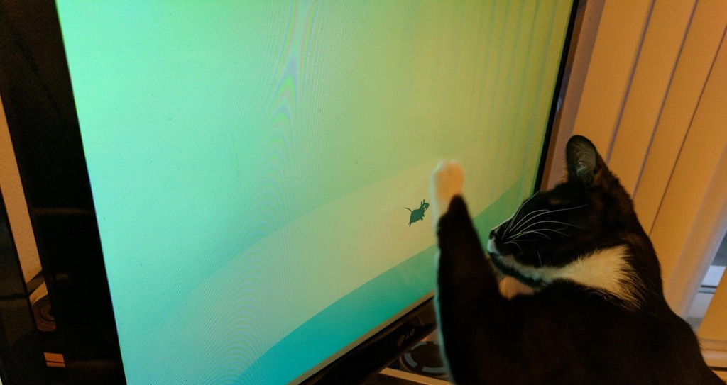 Xfce портит мониторы