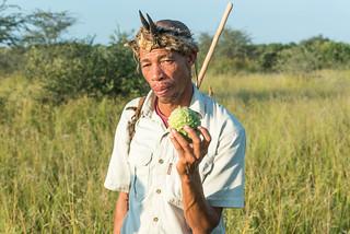 Kustom mit African Horned Cucumber (Horned Melon, Kiwano, Cucumis metuliferus, Horngurke)