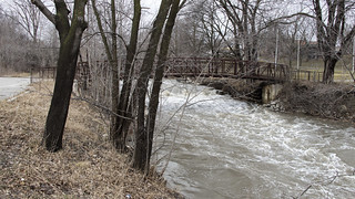 Mimico Creek 06