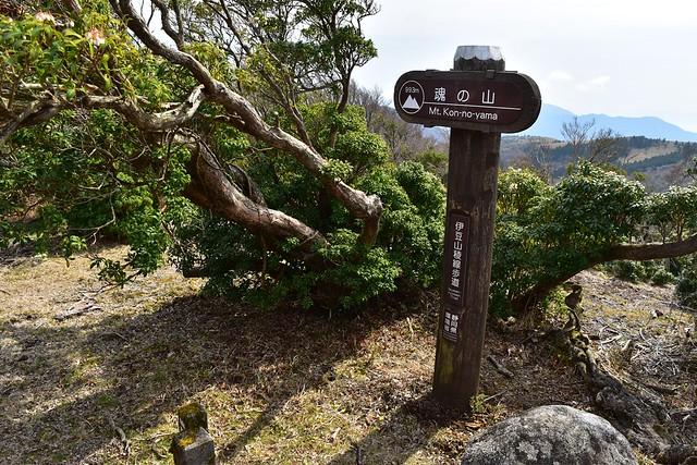伊豆山稜線歩道・魂の山