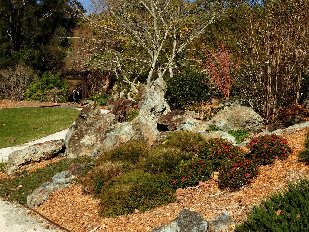 North Coast Regional Botanic Gardens last winter (set of 1… | Flickr