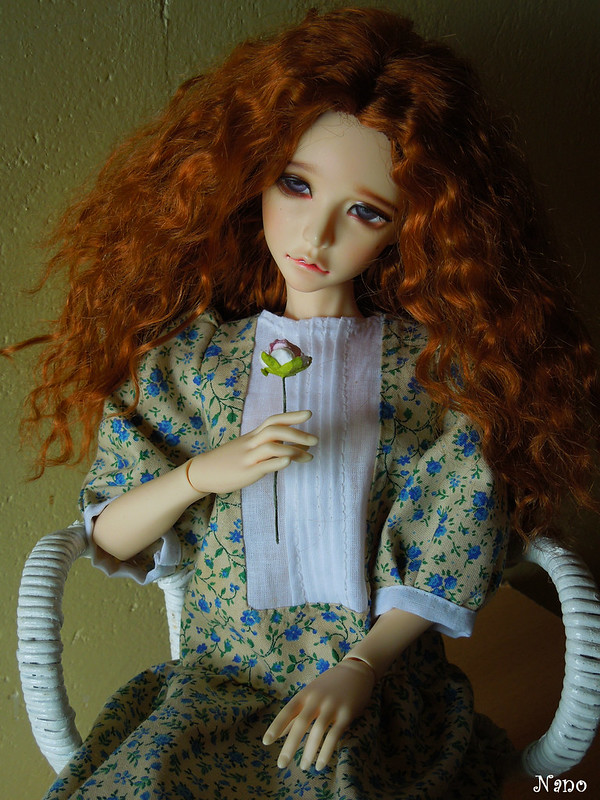 Ma petite famille de BJD (Souldoll, Fairyland, Raccoon doll) - Page 4 34156267996_8e9e4db282_c
