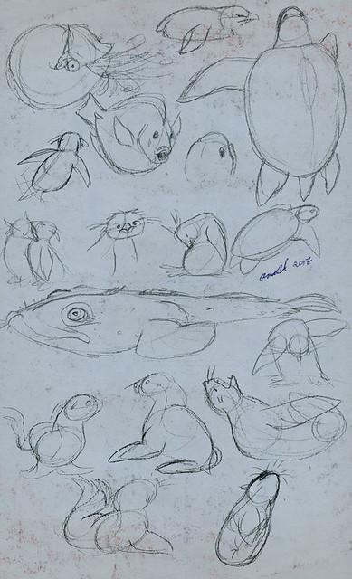 3.30.17 NEAQ Sketches