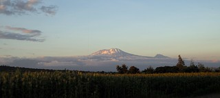 Mount Kilimanjaro at Sunset | by romanboed