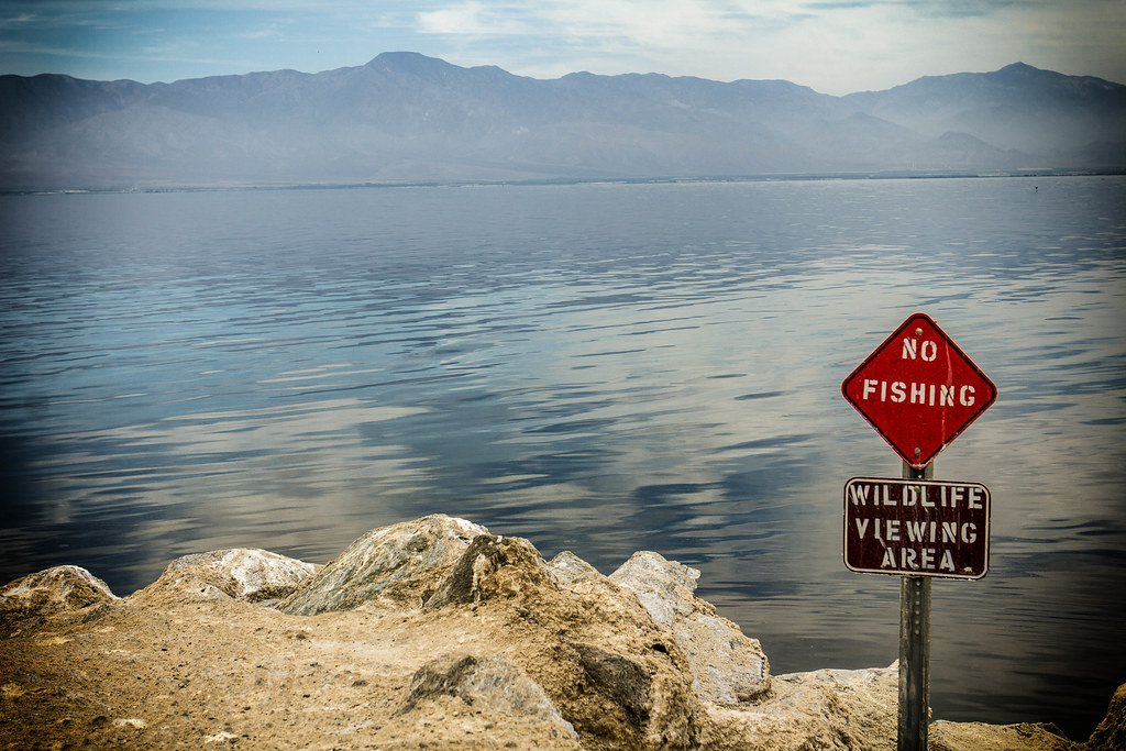 No fishing in the salton sea california explored flickr for Salton sea fishing