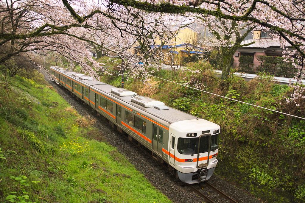 JR Series 313