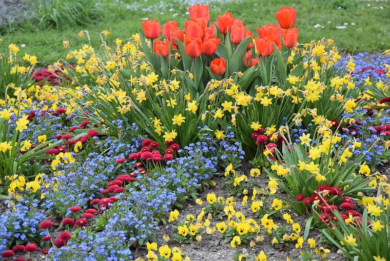 Flower beds 05.04 (3)