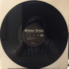 SNOOP DOGG:PUT THA COST TO BE DA BO$$(RECORD SIDE-F)