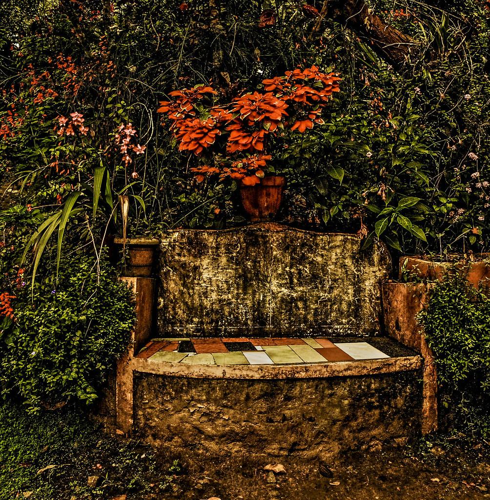 El jard oblidat el jard n olvidado the forgotten garden for El jardin olvidado