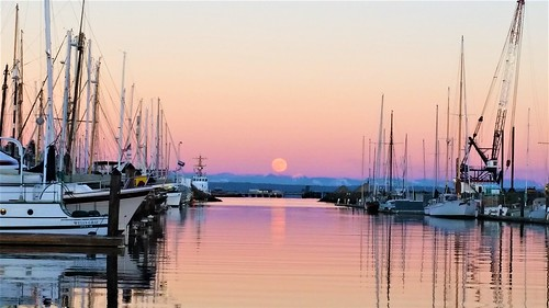 moonrise | by Sailing P & G
