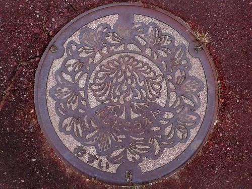 Yoshida Shizuoka, manhole cover 3 (静岡県吉田町のマンホール3)