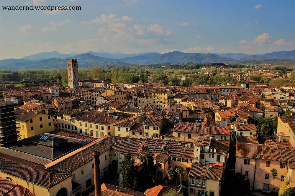 Lucca Ausblick Piazza Anfiteatro