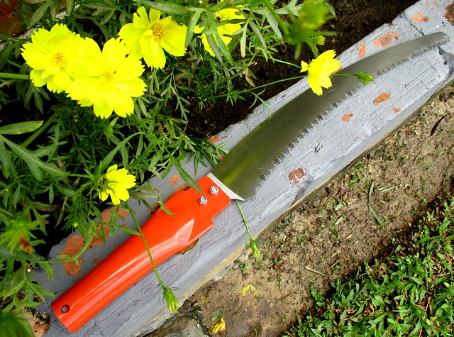 MR DIY garden saw 1